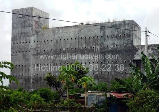 Xây dựng nhà yến ở Kon Tum - Tây Nguyên